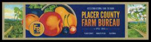 fruit label